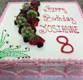 Birthday Cake 17